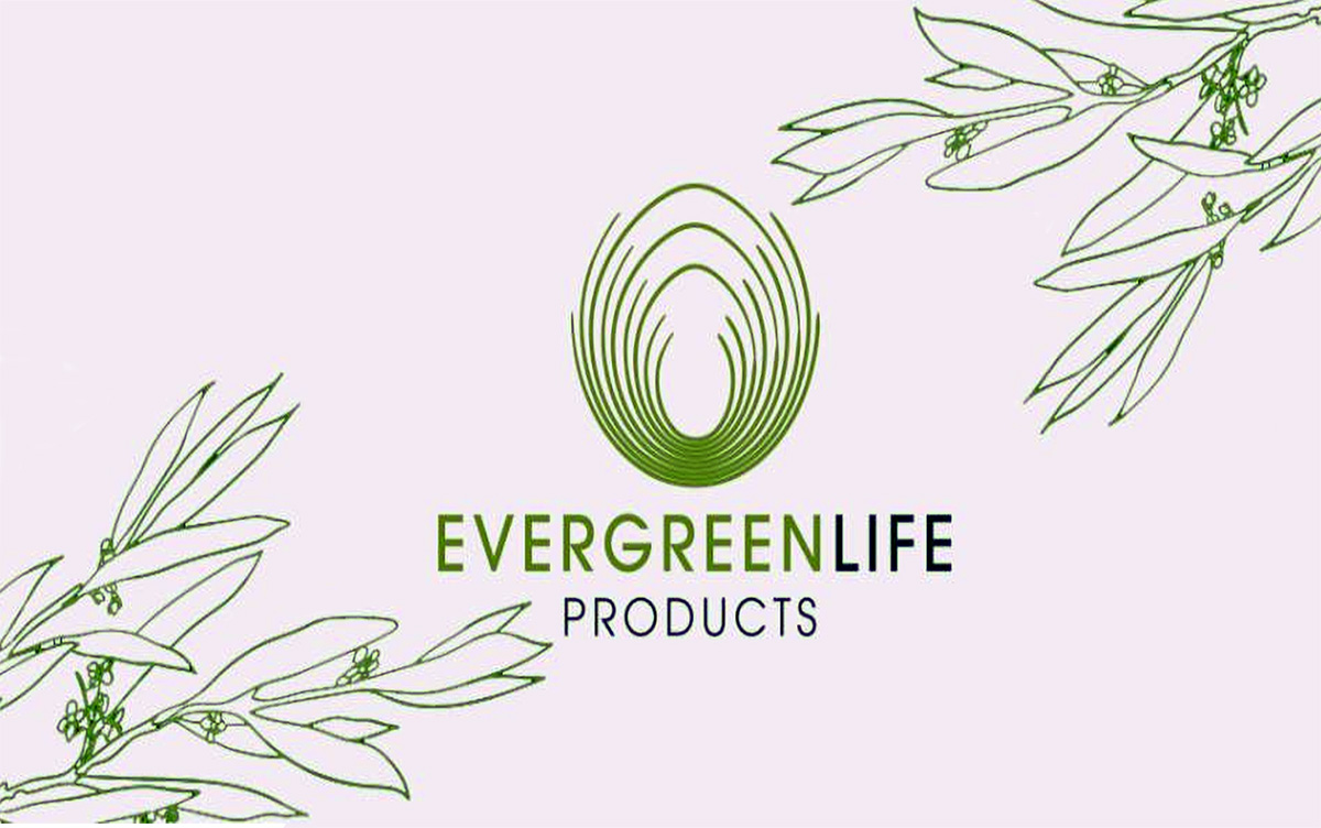 Olife Evergreen
